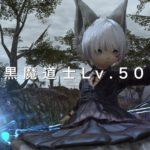黒魔道士Lv.50!